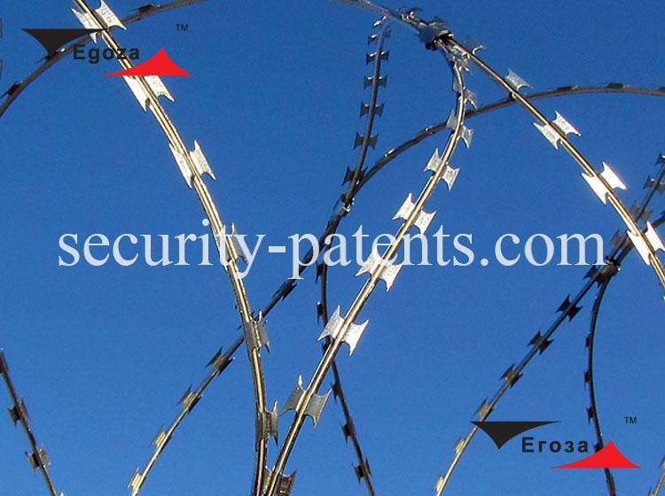 Barbed wire Egoza